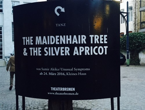 The Maidenhair Tree & The Silver Apricot