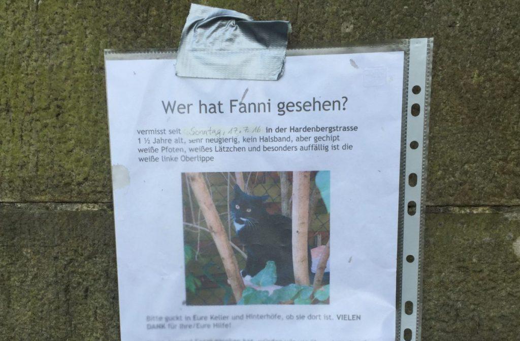 Tiersuchbild Fanny Bremen