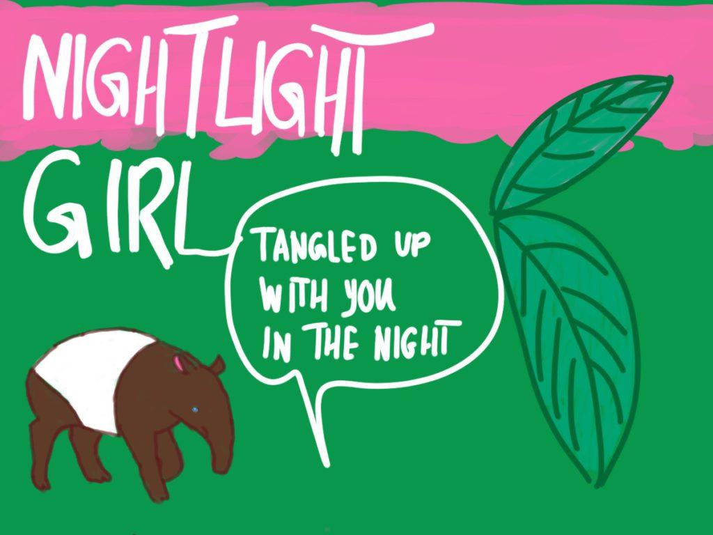 Nightlight Girl Songsketch von Turnover (c)Renate Strümpel